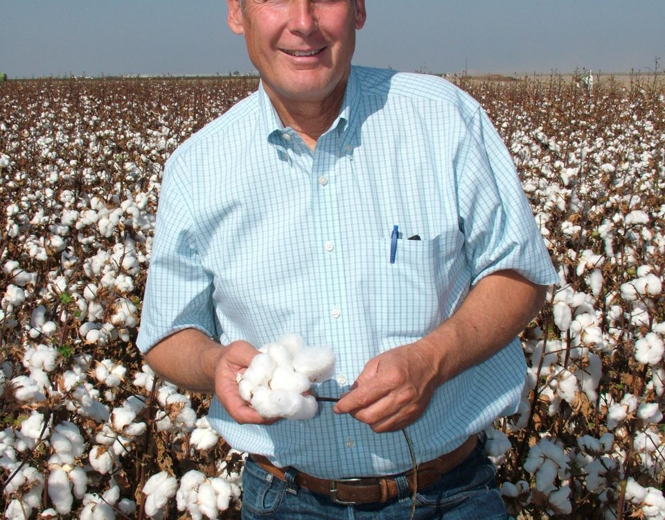Don Cameron #4--Cameron stands in an Acala field 10-19-2011